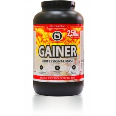 Gainer Professional Mass (2,5 кг)